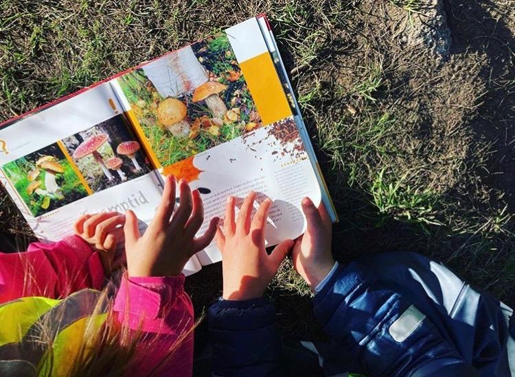 barn lär sig om svampar i naturen pysslingen förskola